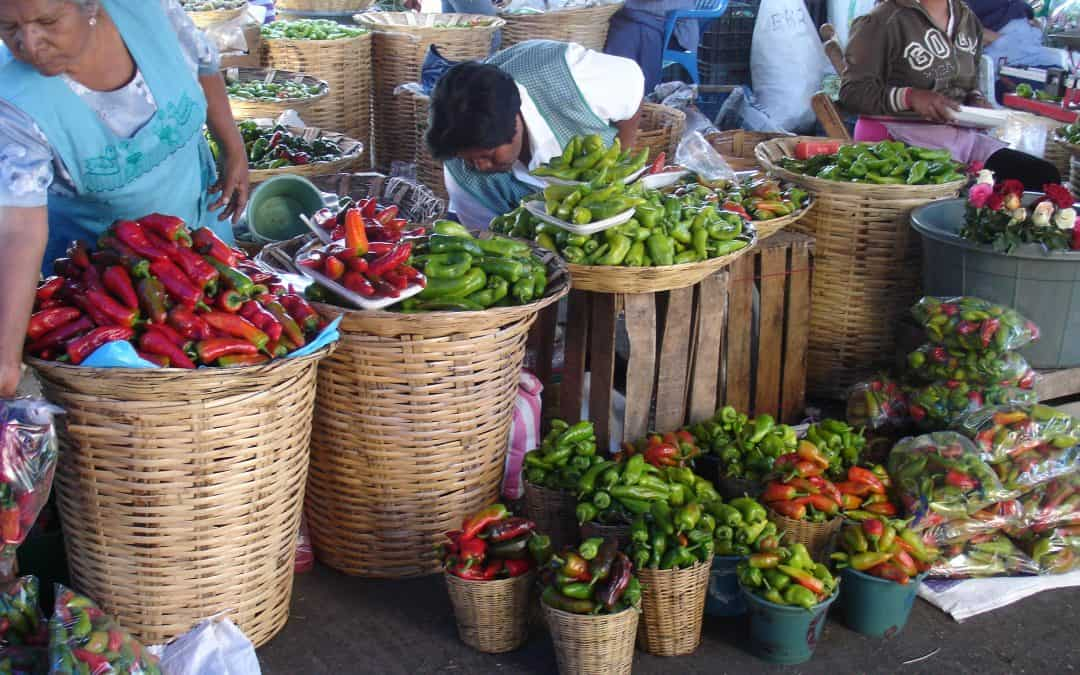 A primer on visiting Oaxaca – UPDATED
