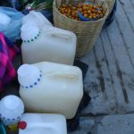 pulque bottles
