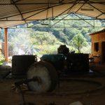 Mezcal Tosba Palenque