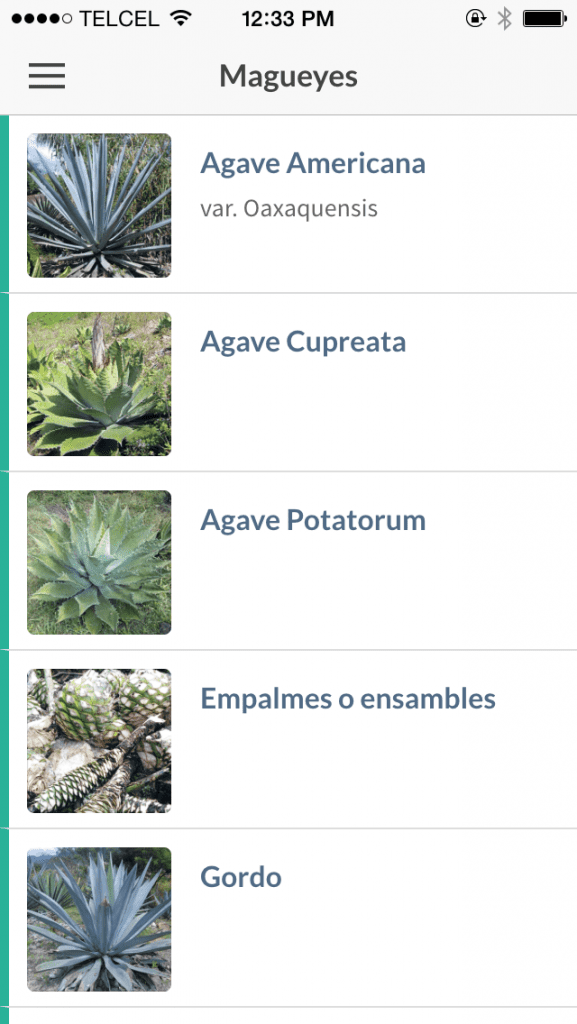 A screenshot from Ulises Torrentera's Mezcaleria app.