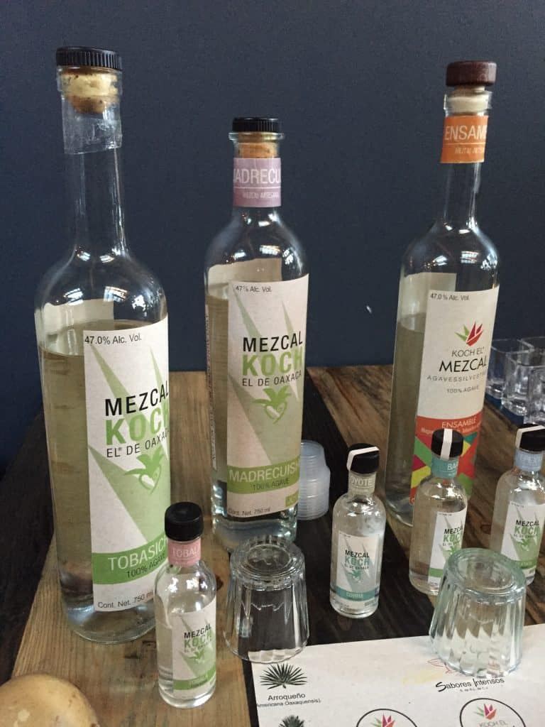 The Mezcal Koch line up