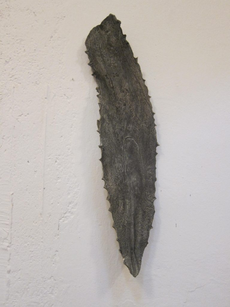 A cast of an agave leaf that adorns another wall of Omar's taller.