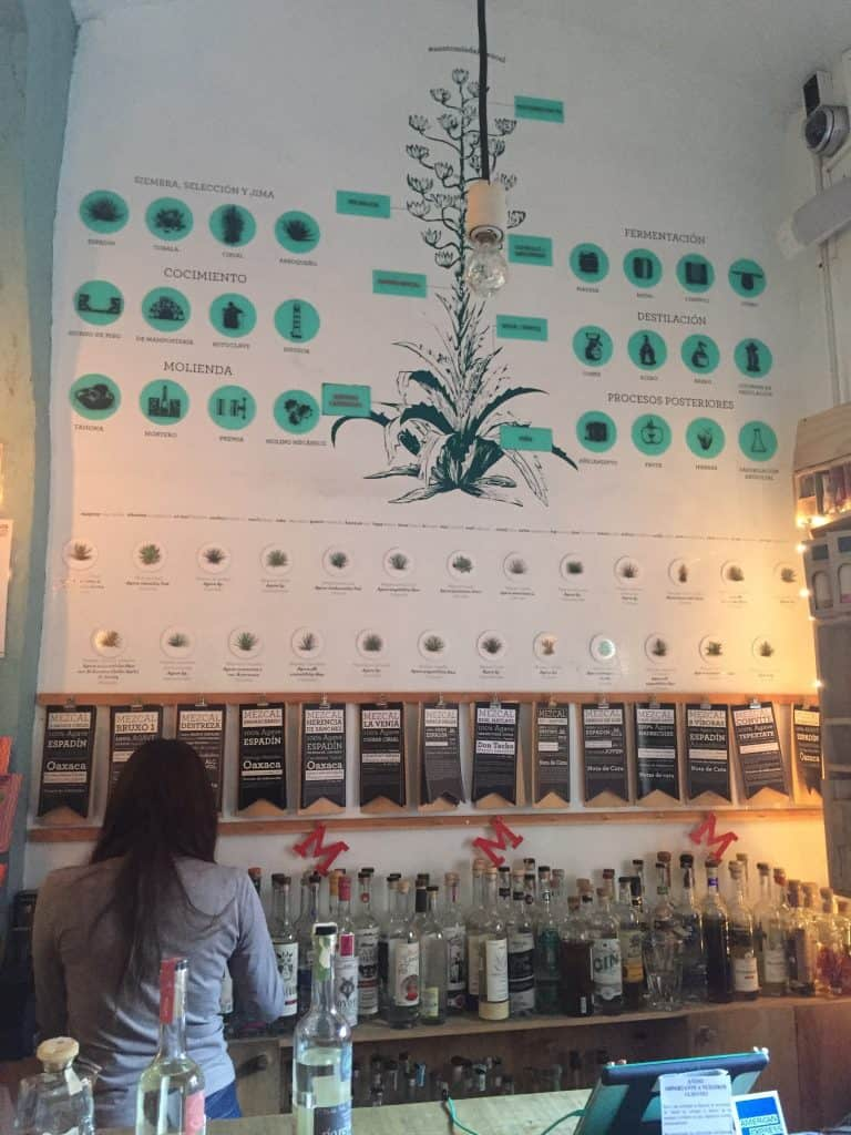 The agave wall at Mezcalillera