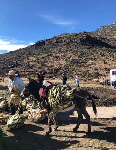 Durango Tour - 3