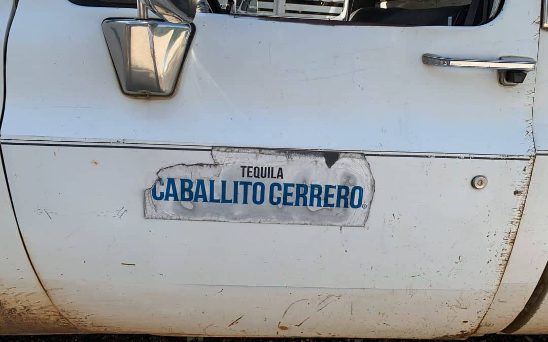 El Caballito Cerrero: A tequila in all but name