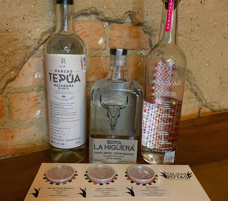The virtual world of online mezcal tastings