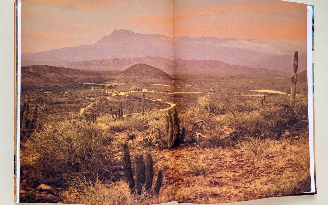 Quarantine Cookbook Series Part 2: The Baja California Cookbook